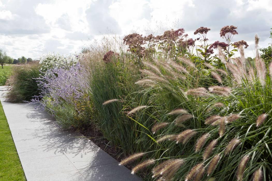 Rijke beplanting die aansluit bij de polder- en weidekarakter: minimalistische Tuin door Andrew van Egmond (ontwerp van tuin en landschap)