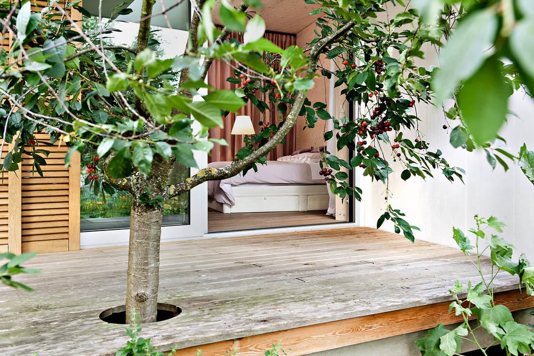 Architekt Michael Danke:  Häuser von Thoma Holz GmbH,