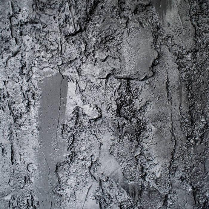 Scrusted black van Dofine wall | floor creations Modern