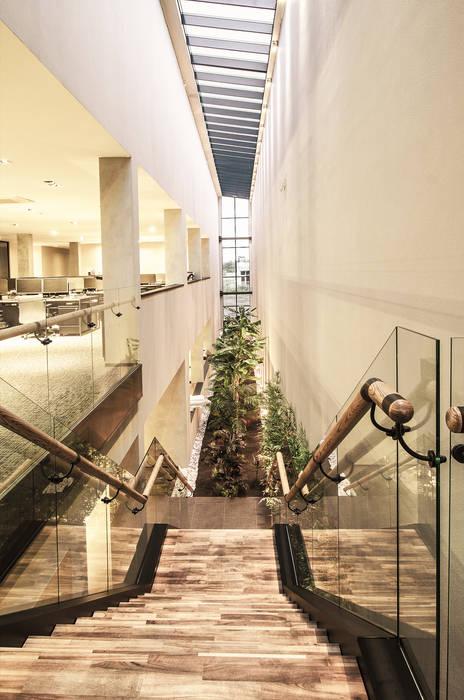 Bürogebäude von Escapefromsofa, Modern