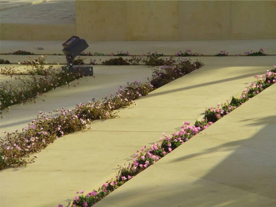fotos/jardín en Aravaca(Madrid) Detalle de ranuras de plantación:  de estilo  de Jardines secretos