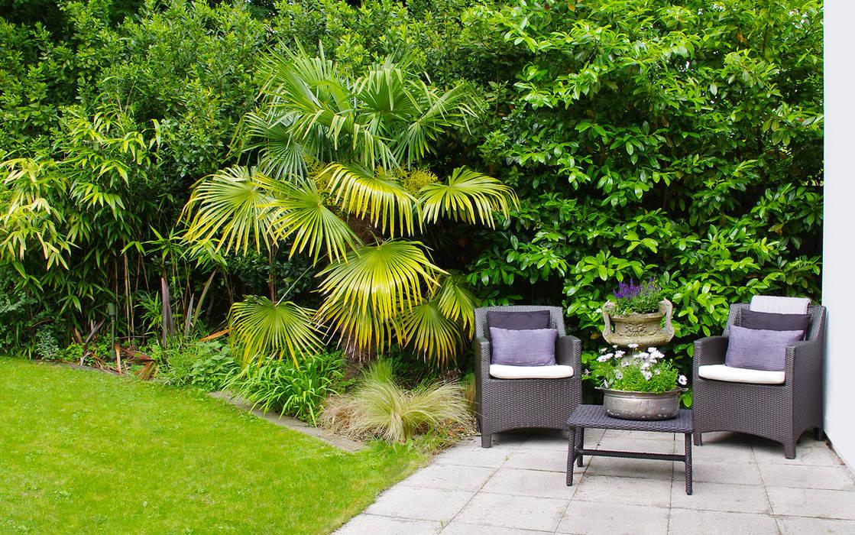 Exterior Terrace Modern garden by LLI Design Modern