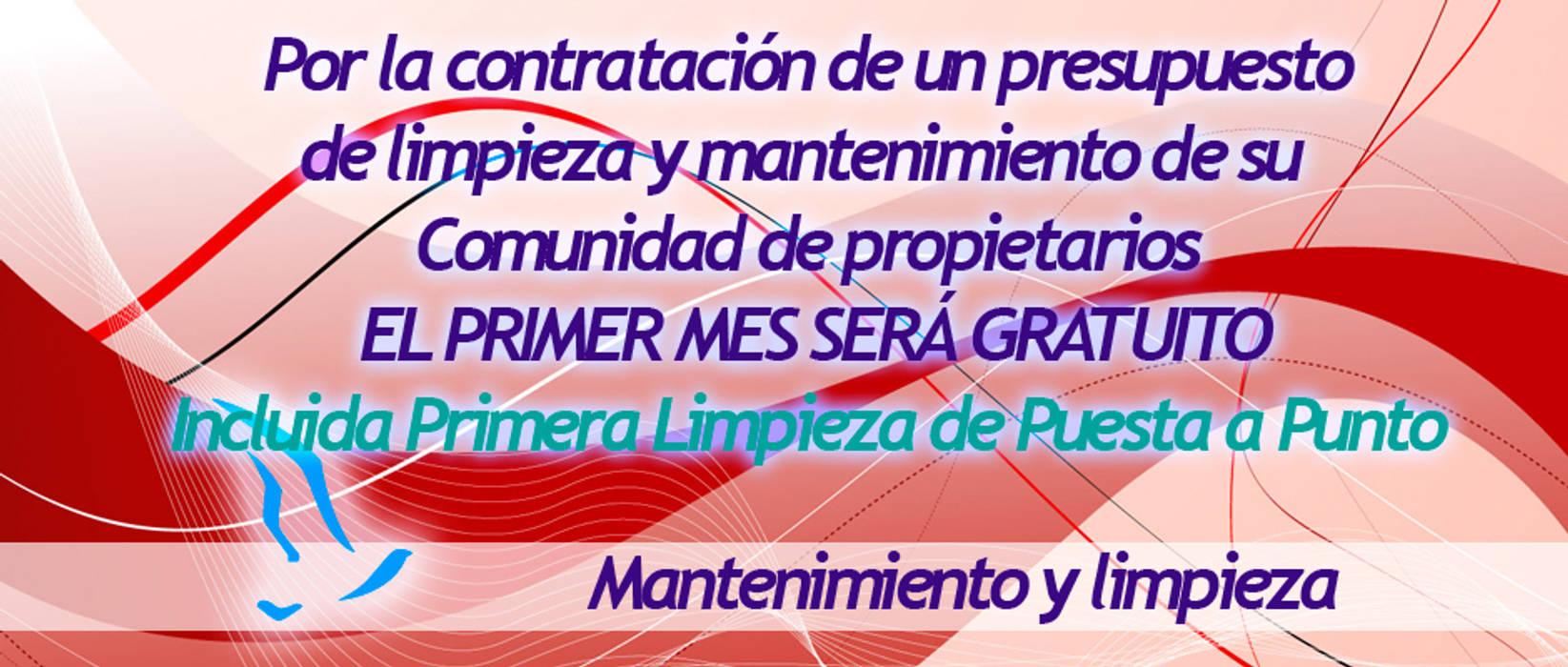 Puligaviota - Empresa de limpieza en Madrid: Garajes de estilo  de Puligaviota - Empresa de limpieza