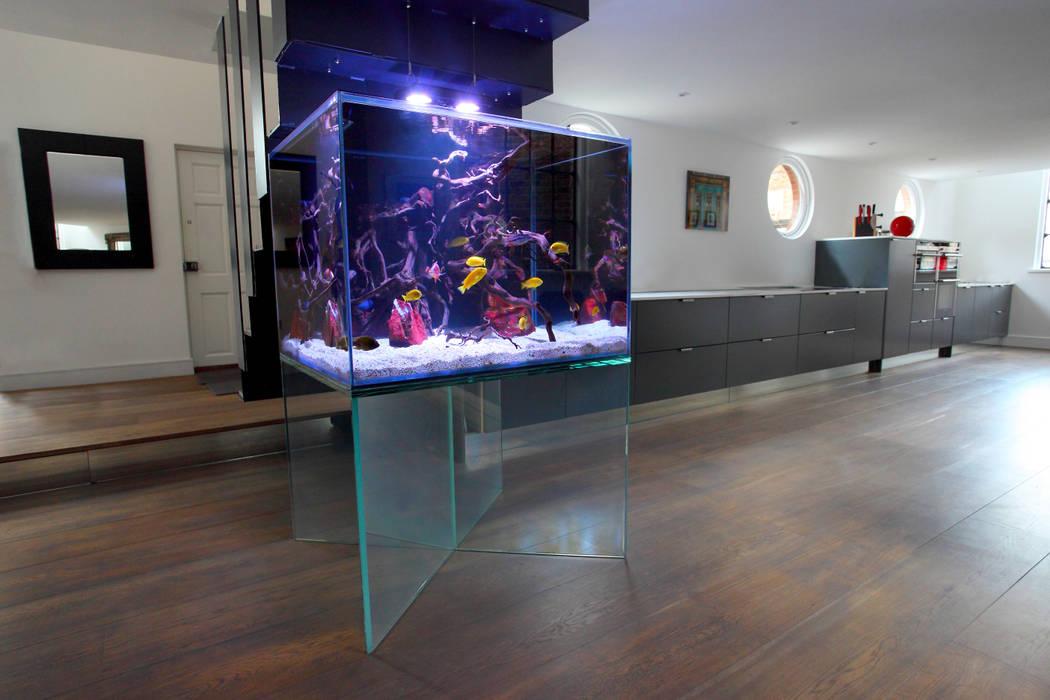 Wohnzimmer von aquarium architecture homify - Aquarium wohnzimmer ...