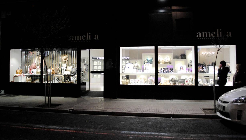 Escaparate y acceso interior03 Oficinas y tiendas de estilo moderno