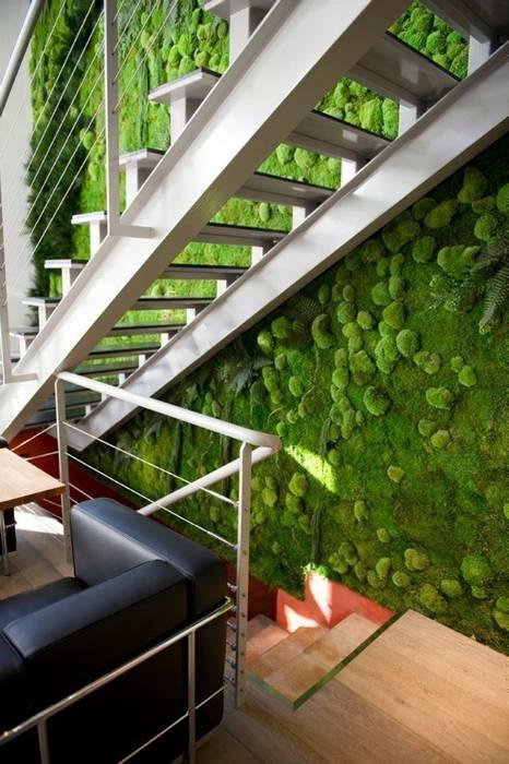 Mur Végétaux Espaces de bureaux originaux par Green Mood Éclectique