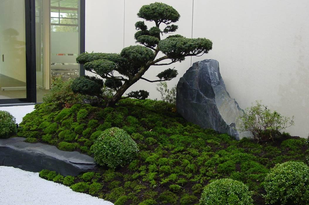 Gartengestaltung Japanischer Garten, gartengestaltung unter anwendung der japanischen gartenkunst, Design ideen
