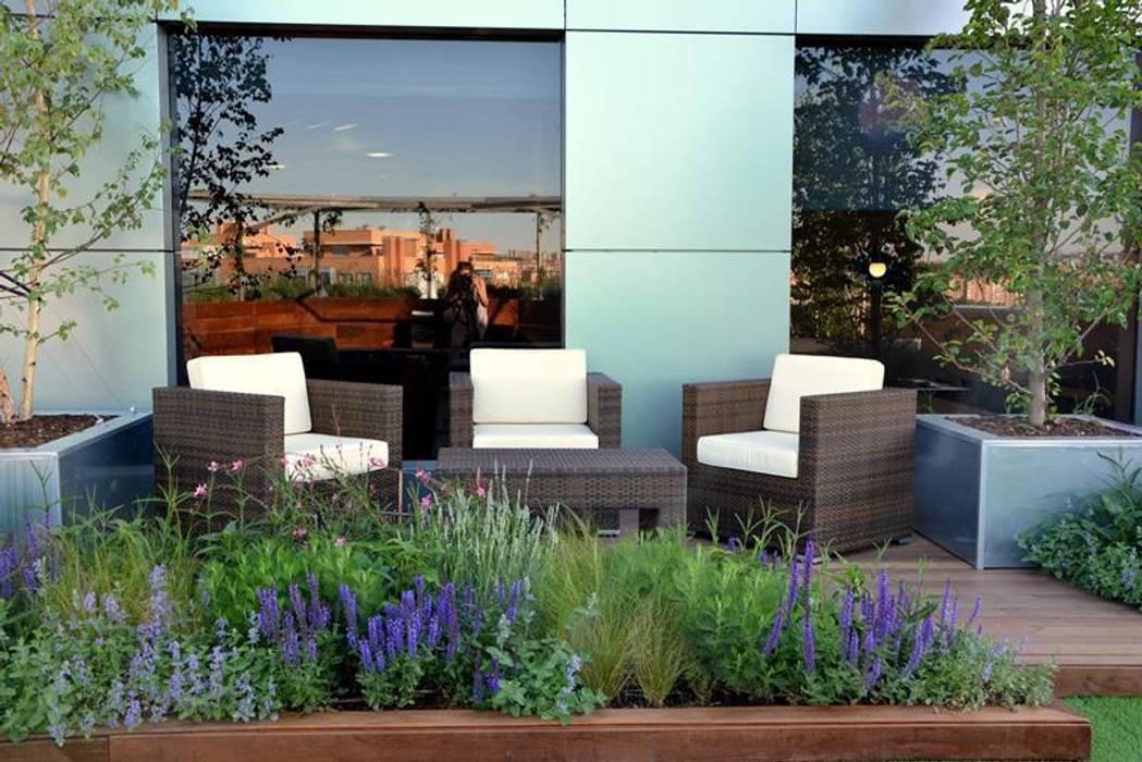 Terraza relax en Marid Edificios de oficinas de estilo moderno de La Paisajista - Jardines con Alma Moderno