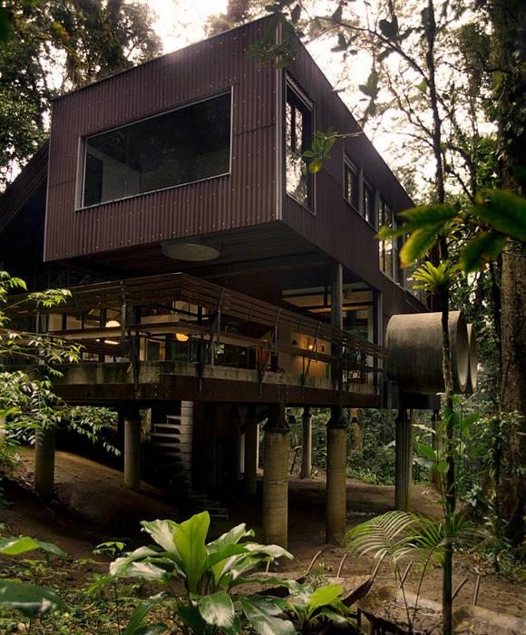 Tropical style houses by ARQdonini Arquitetos Associados Tropical