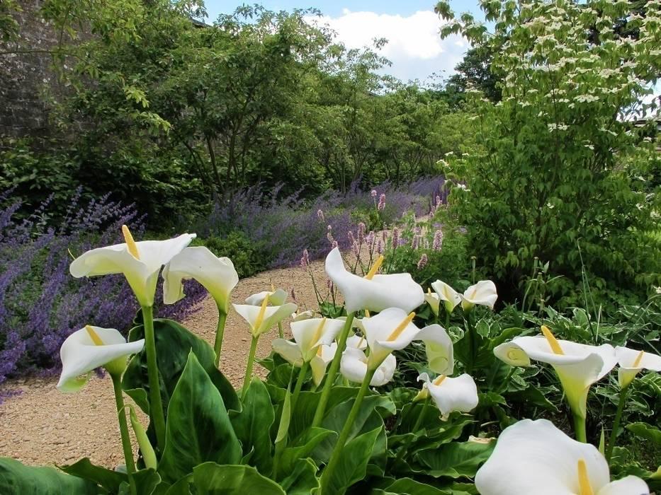 Walled Garden, Bradford Upon Avon Jardines de estilo moderno de Katherine Roper Landscape & Garden Design Moderno