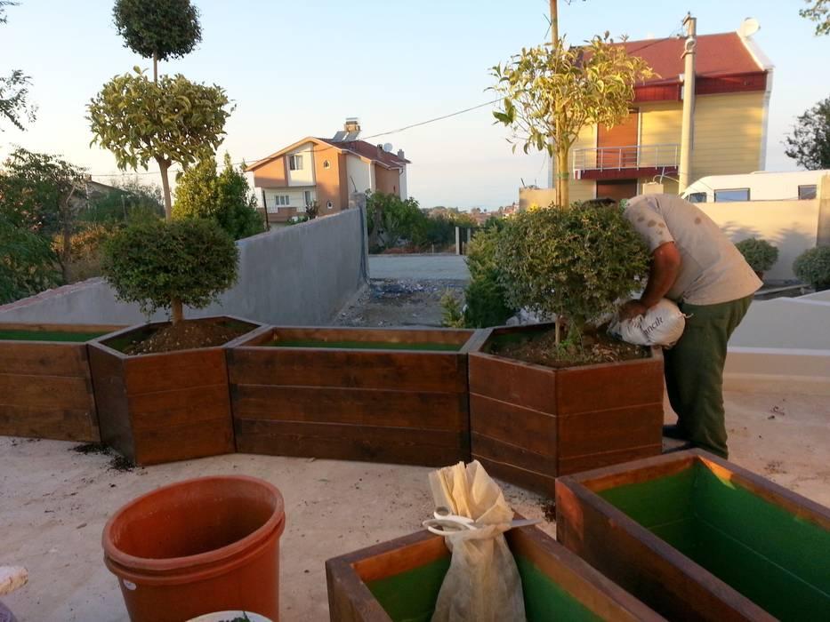 Larix Ahşap saksılar ve bitkilendirme Doğa Gıda Tarımsal Üretim LTD Akdeniz Balkon, Veranda & Teras