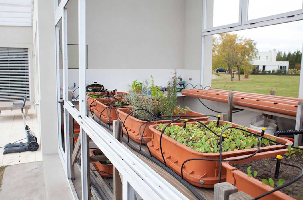 La Casa G: La Casa Sustentable en Argentina. Jardines modernos: Ideas, imágenes y decoración de La Casa G: La Casa Sustentable en Argentina Moderno