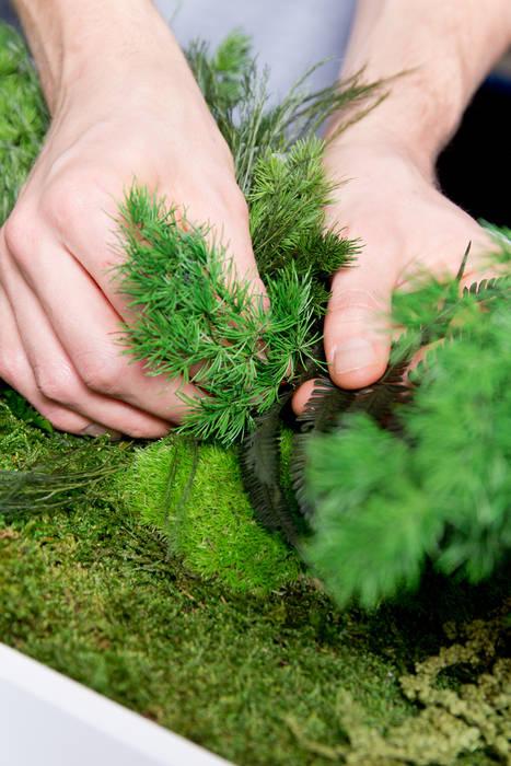 Vorstellung unserer Produkte: Pflanzen- und Moosbilder von styleGREEN: modern  von FlowerArt GmbH | styleGREEN,Modern Naturfaser Beige