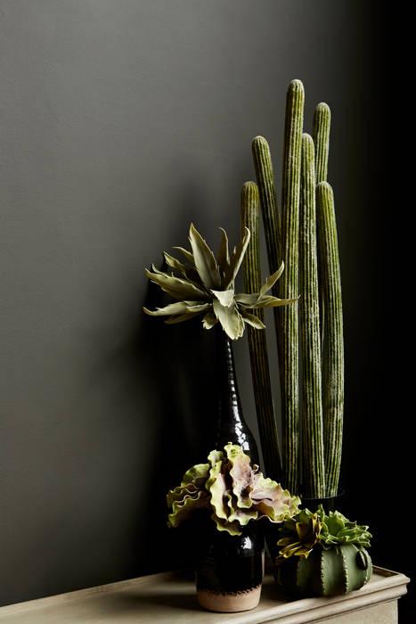 Mohave faux cactus par Abigail Ahern Éclectique