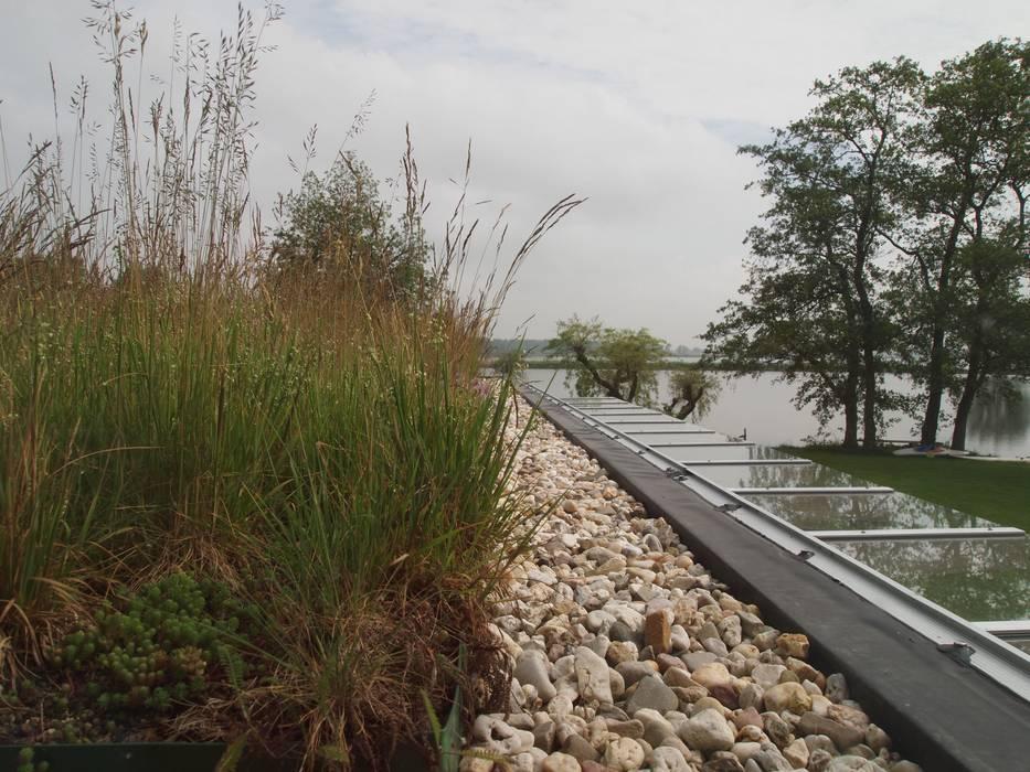 Het met grassen begroeide dak.:  Huizen door Gerard Rijnsdorp Architect