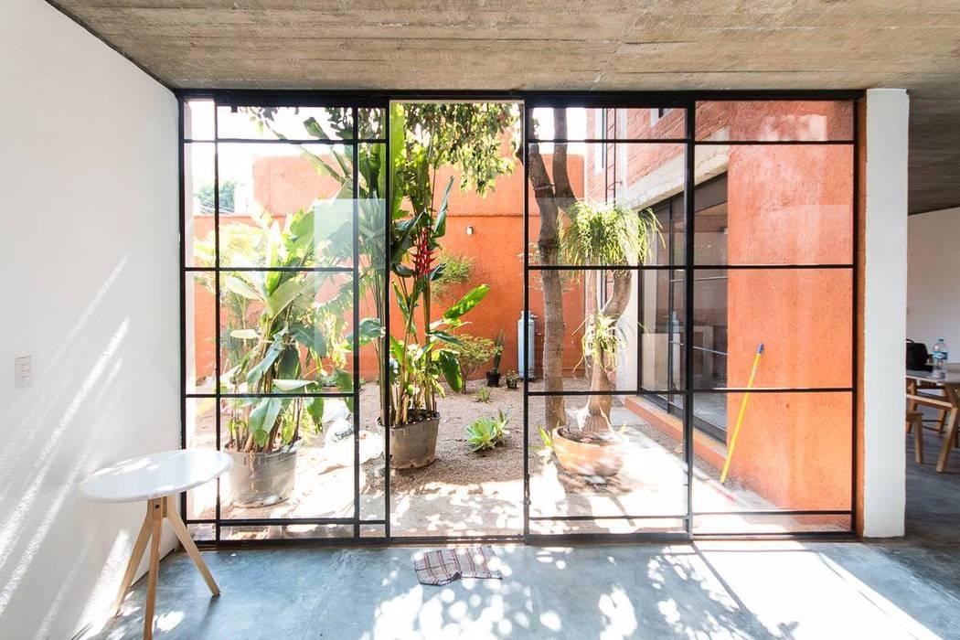Jardines de estilo minimalista de rOOtstudio Minimalista