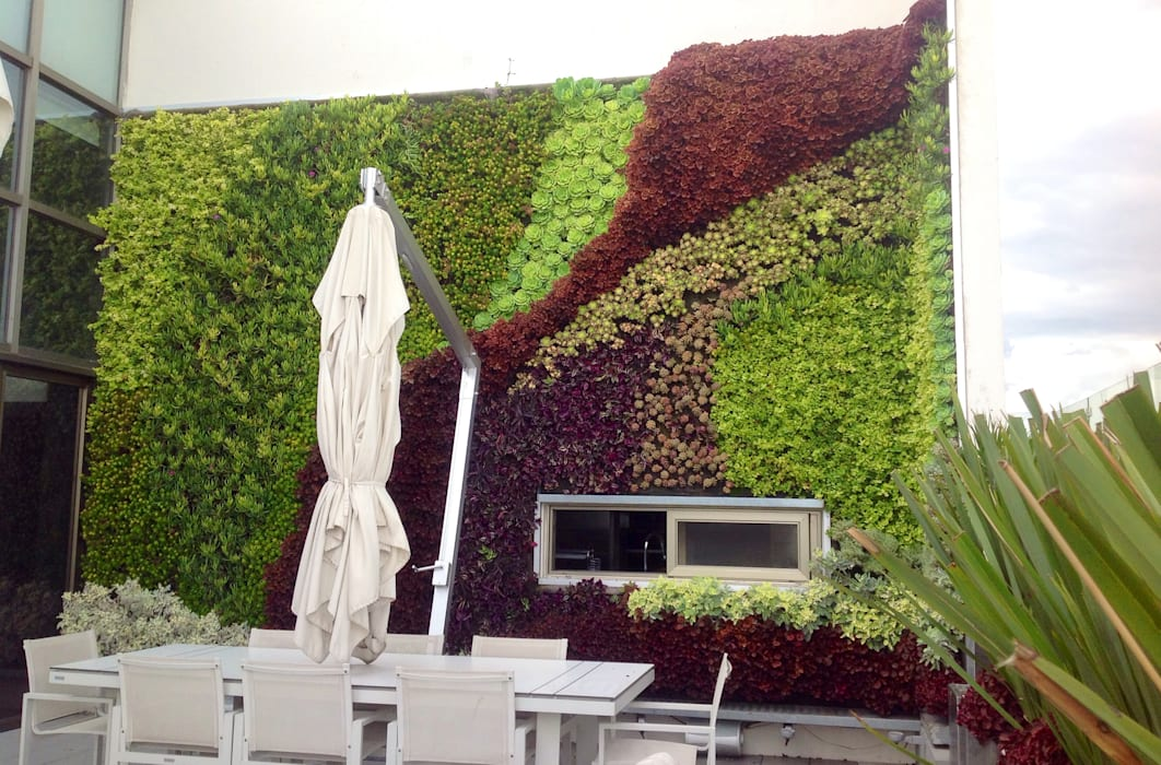 Jardín Vertical : Estudios y oficinas de estilo  por ENVERDE