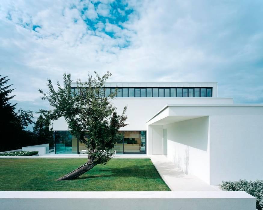 Villa P:  Garten von Philipp Architekten - Anna Philipp