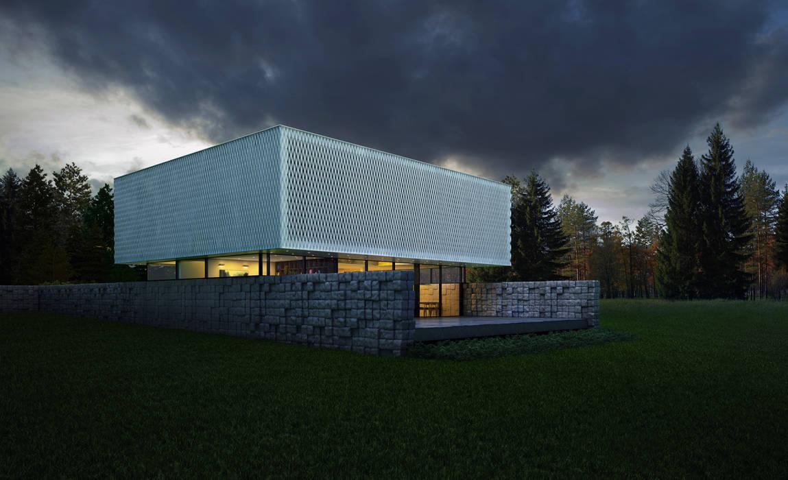 Black&White: Дома в . Автор – ALEXANDER ZHIDKOV ARCHITECT,