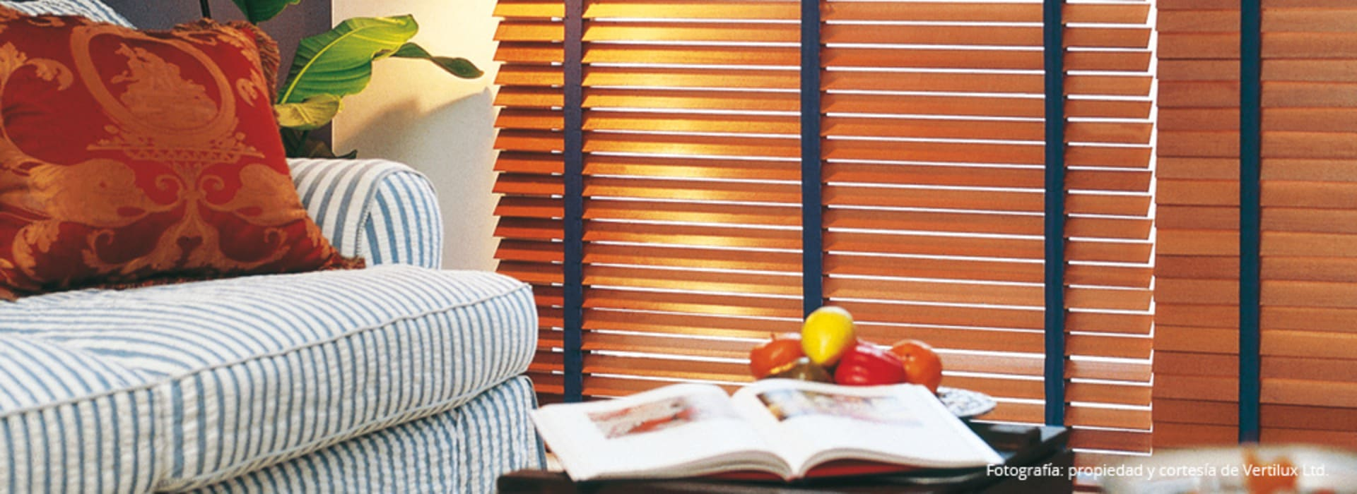 Cortinas horizontales de madera: Livings de estilo  por Dino Conte