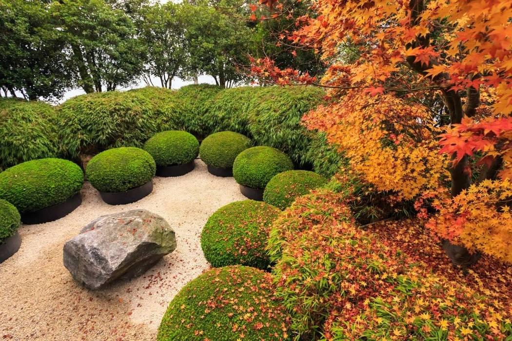 Assortiment de Boules Jardin rustique par Solitair Rustique