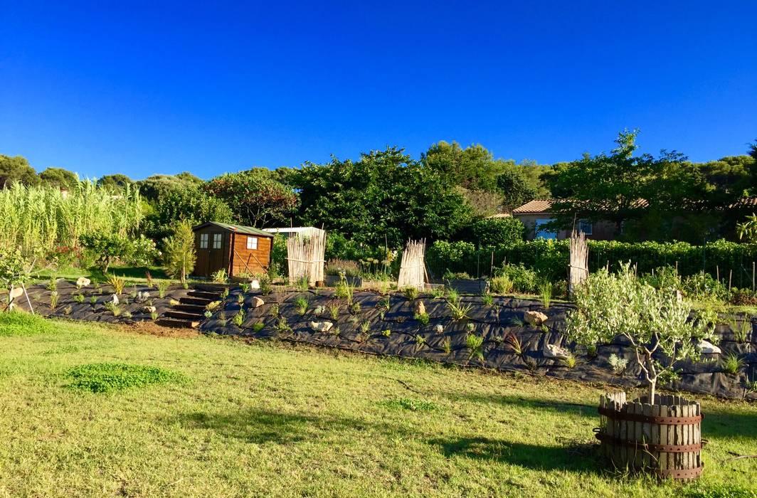 Aménagement talus: Jardin de style  par In&Out Garden