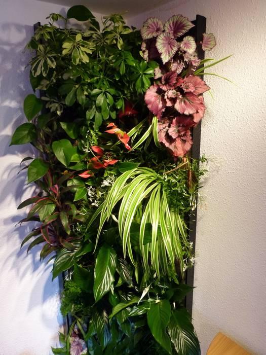 Mur végétal intérieur vertical flore: paysagisme d\'intérieur de ...