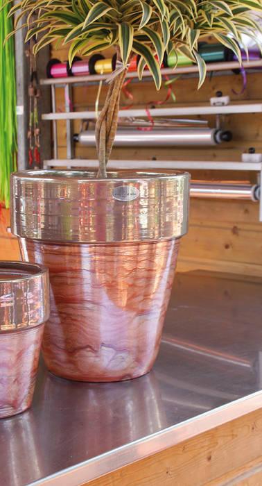 Dallas Poterie d'Albi Bois de Rose: Jardin d'hiver de style  par Poterie d'Albi