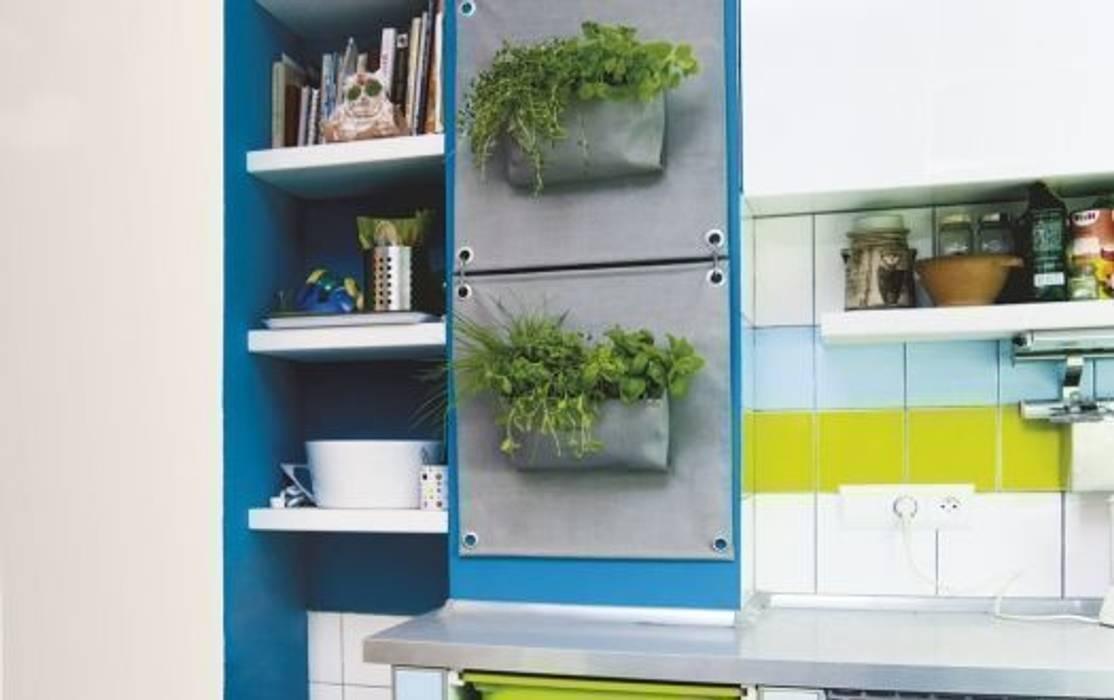 Butik Bahçe Dikey Bahçe ve Peyzaj Tasarımları  – Butik Bahçe ile Yeşili Duvarlarınıza Taşıyın..!:  tarz Teras, Minimalist