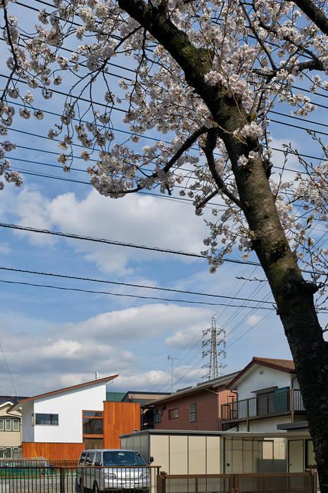 桜並木からの遠景: (有)菰田建築設計事務所が手掛けた家です。