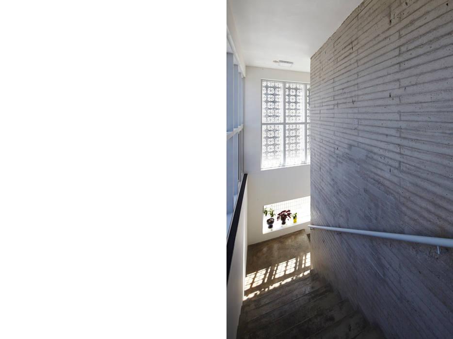 Lotus Haus (로터스하우스): 스마트건축사사무소의  복도 & 현관