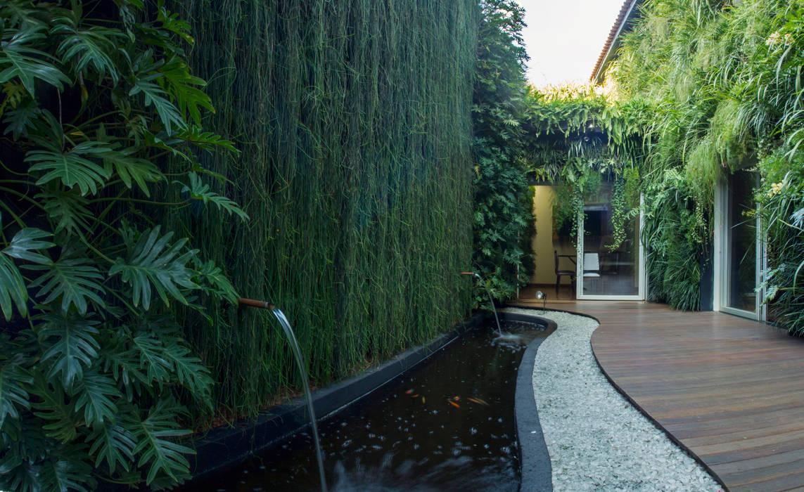 Área do lago - Depois:   por Quadro Vivo Urban Garden Roof & Vertical