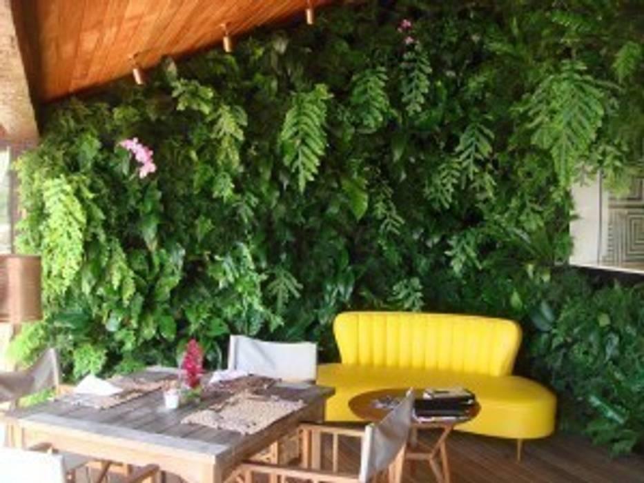 Projetos Diversos Hotéis tropicais por Quadro Vivo Urban Garden Roof & Vertical Tropical