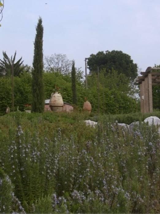 la zona della pergola con cipressi d'ingresso,rosmarini e a zona delle acidofile: Giardino in stile In stile Country di Paradeisos