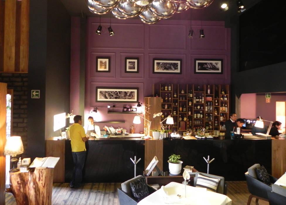 Raíz, Hat Diseño: Restaurantes de estilo  por Hat Diseño, Moderno