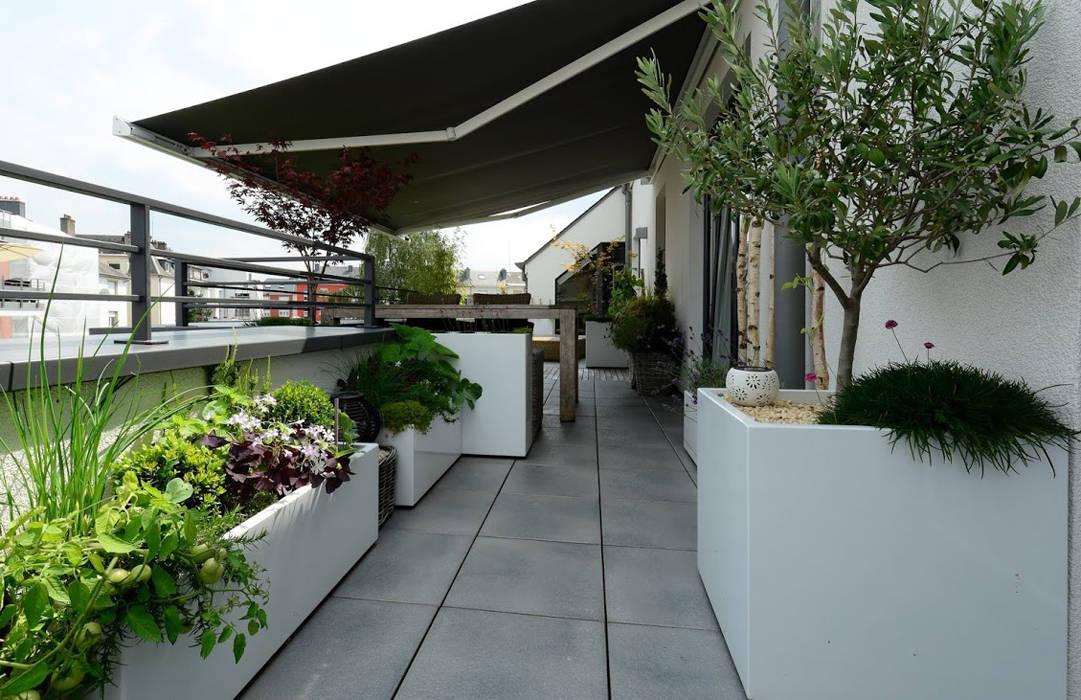 Jardinières sur mesure Image'In: Terrasse de style  par ATELIER SO GREEN