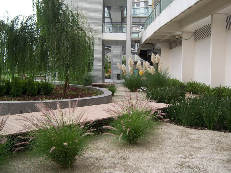 Pennisetums y lirios persas. : Jardines de estilo  por KVR Arquitectura de paisaje