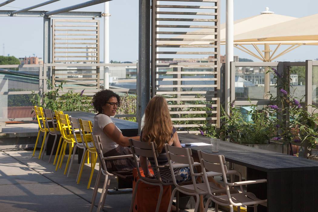 Dakterras Moderne musea van ontwerpplek, interieurarchitectuur Modern