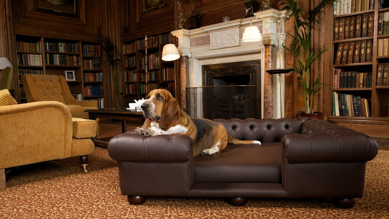 Balmoral large sofa in Rich Chocolate faux leather par homify Rural
