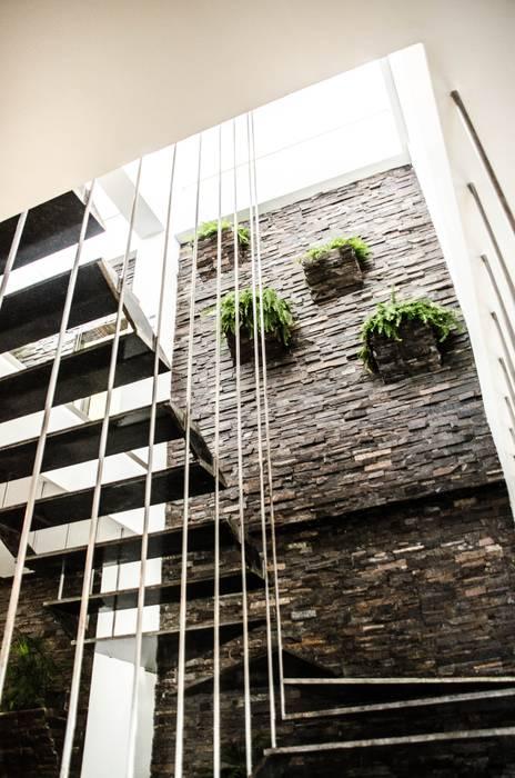 Escalera y jardin Pasillos, vestíbulos y escaleras modernos de ARKOT arquitectura + construcción Moderno