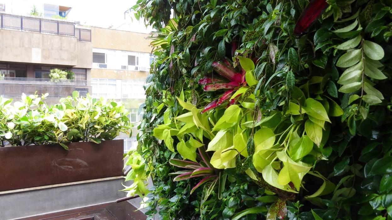 Jardim Vertical: Jardins tropicais por Viviane Menescal