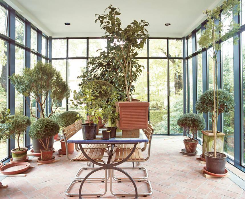 Innenansicht mit Pflanzen v. Bismarck Architekt Moderner Wintergarten