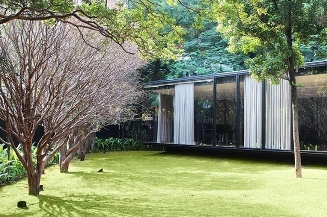 Casa Jacarezinho: Jardins  por André Paoliello Paisagistas Associados,Clássico