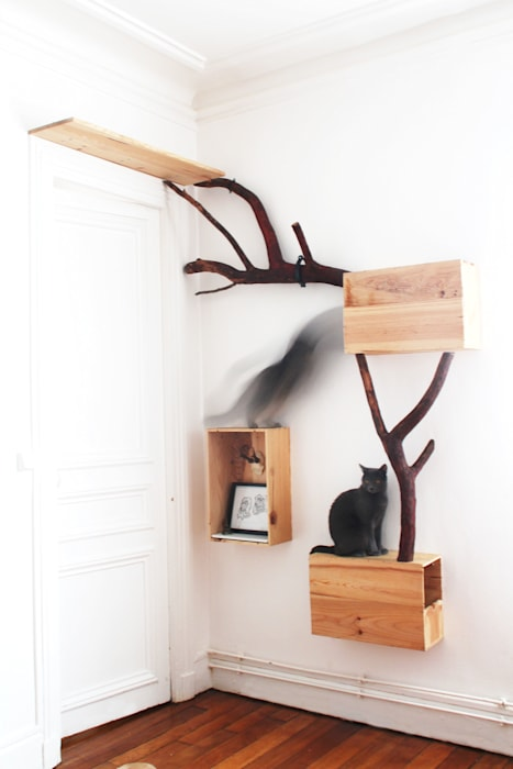 Global view of the cattreehouse: modern  von homify,Modern
