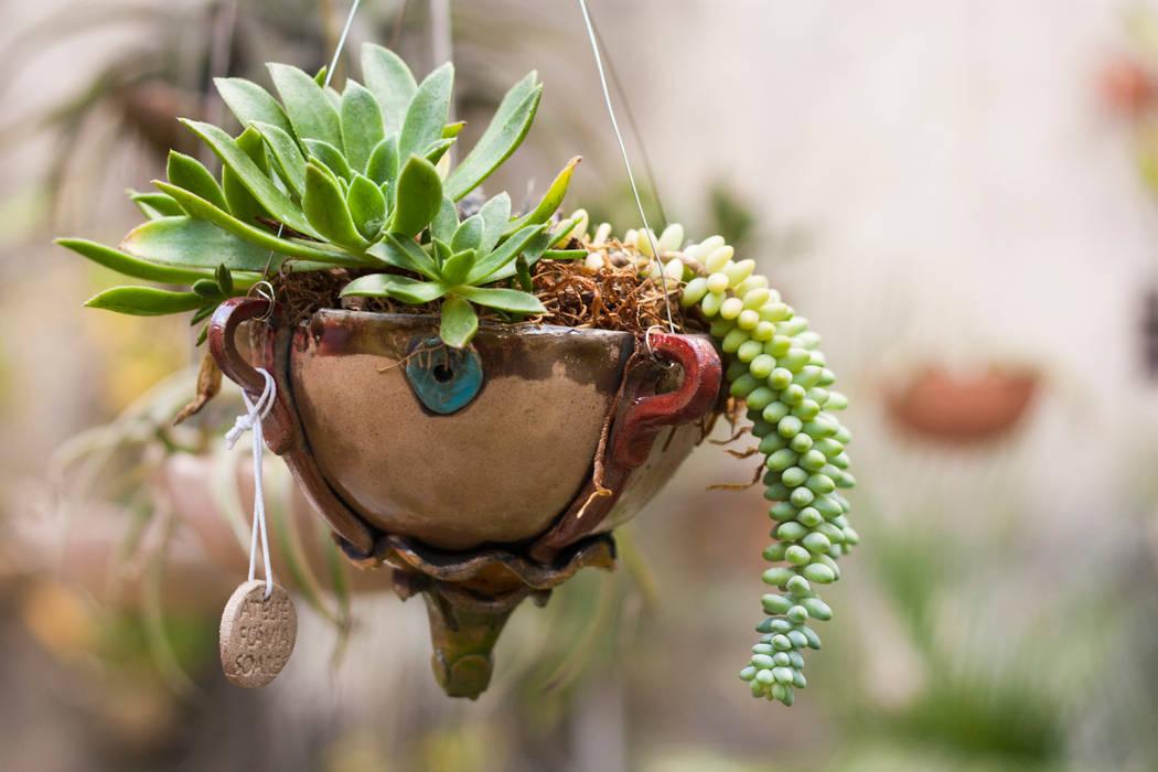 Vaso flutuante. Ateliê de Cerâmica - Flavia Soares JardimPotes vasos