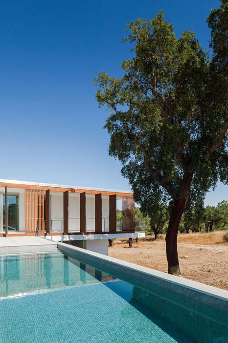 Swiming Pool Piscinas Por Opera I Design Matters