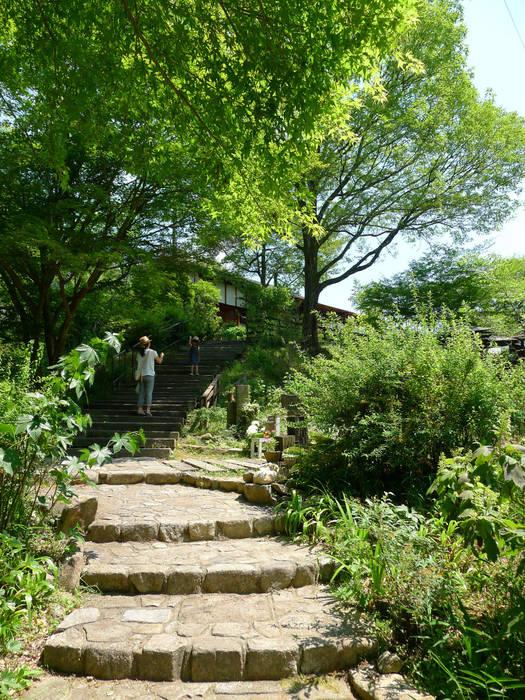 Garden by 風建築工房, Scandinavian