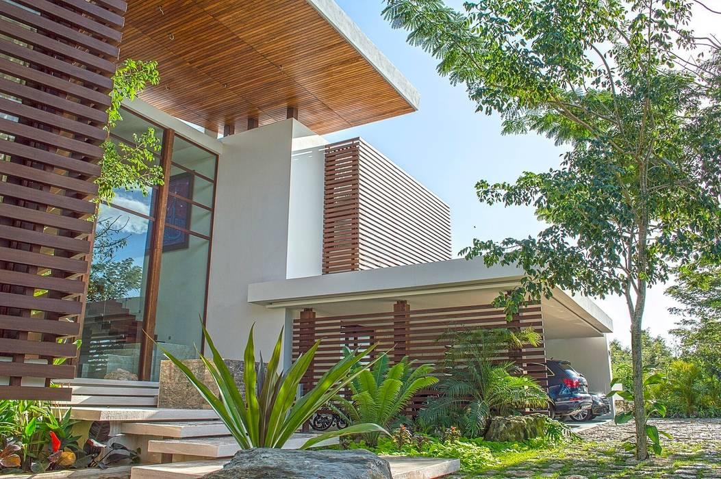 Tropical style houses by Ancona + Ancona Arquitectos Tropical
