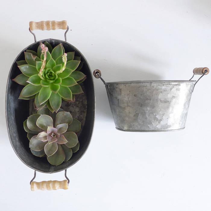 Two Zinc Oval Pots With Handles par Lilac Coast Rural