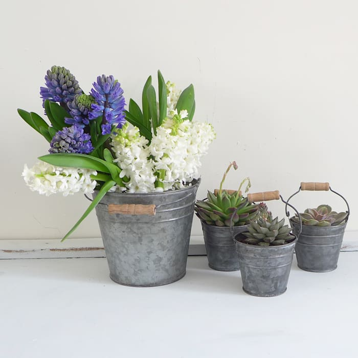 Zinc Metal Bucket:  Garden  by Lilac Coast